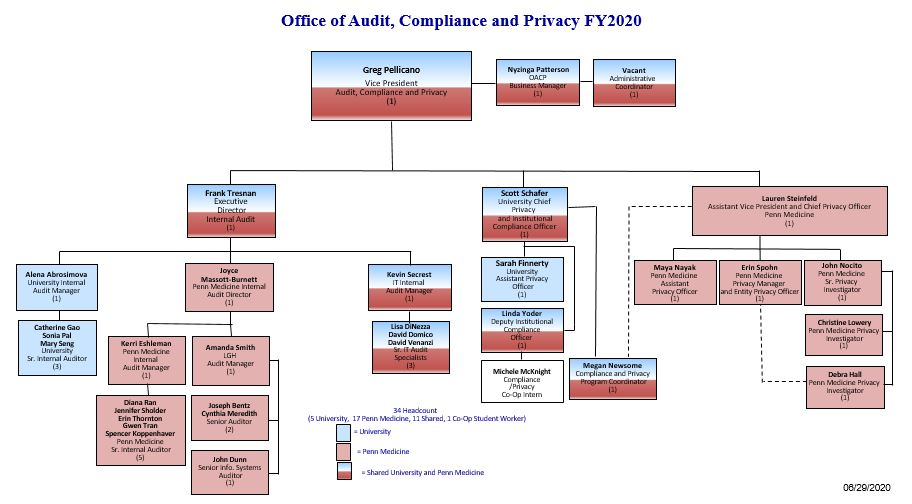 Picture of OACP organization chart